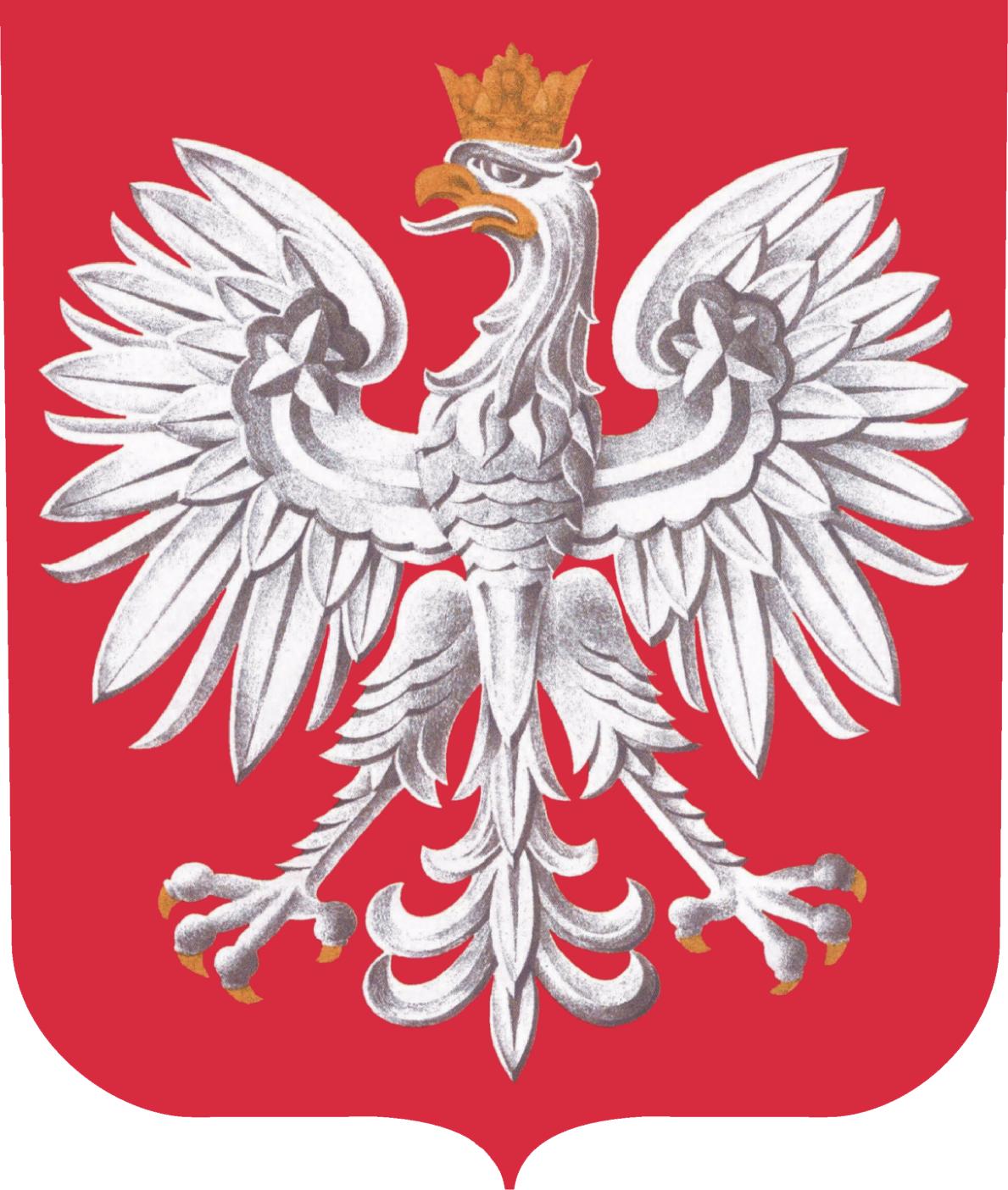 Ikona Monitor Polski